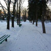 Парк Зимой. winter Park, Большая Мартыновка