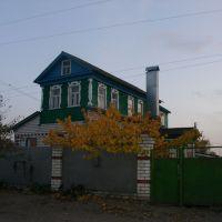 Вешенская. Архитектурный стиль станицы, Вешенская