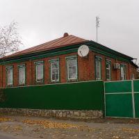 Veshenskaya. House style, Вешенская