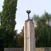 Чаша, Волгодонск