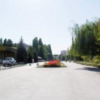 Бульвар Победы, Волгодонск