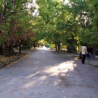 "Парк ""Дружбы"", Волгодонск"