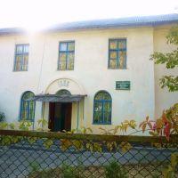 Детская музыкальная школа, Горняцкий