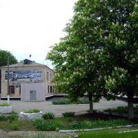 Музей и каштаны, Гуково