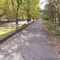 Скоро Осень, Донской