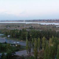 Персидский залив, Донской