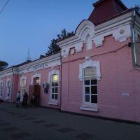 Станция Ремонтная, Дубовское