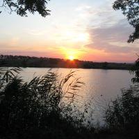 Кушнарёвский пруд, Жирнов