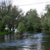 река быстрая ,с маленького мостика, Жирнов