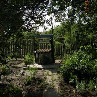 В родительском саду ..., Жирнов