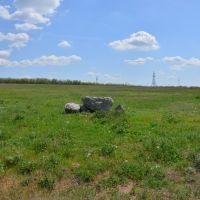 Камни в поле, Жирнов