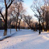 Заветное зимой, Заветное