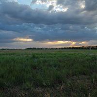 Поле около Филиппёнкова к закату, Заводской