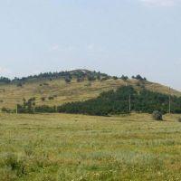 bald mountain, Заводской
