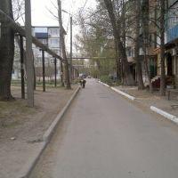Дворы, Зверево