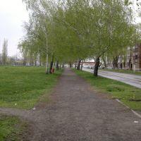 Дорога от ДК к Пятёрке, Зверево