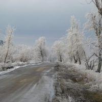 Дорога зимой., Зверево