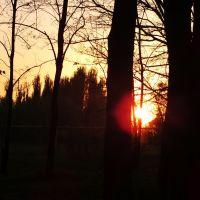 закат, Зверево