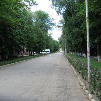 Главная улица, Зерноград