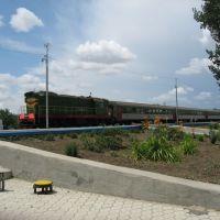 Поезд, Зерноград