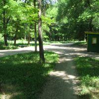Зерноградский парк, Зерноград