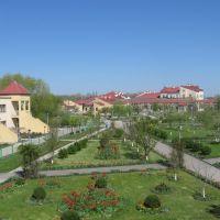 Весна в разгаре! (28 апреля 2010), Зерноград