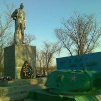 Памятник, Зимовники