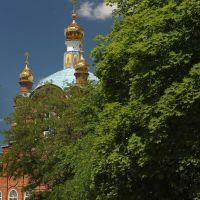 Вид на Покровскую церковь с аллеи, Константиновск