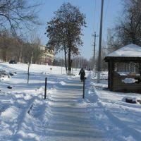2011_Зима,январь, Красный Сулин