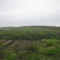 На этом холме были немецкие укрепительные позиции, Куйбышево