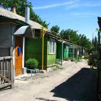 House, Миллерово