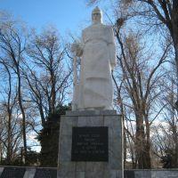Вечная слава воинам-героям павшим в боях за свободу и независимость Родины, Морозовск
