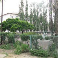 Школа №1, Орловский