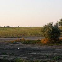 По дороге..., Песчанокопское