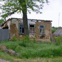 Разруха. с. Покровское. Май 2010, Покровское