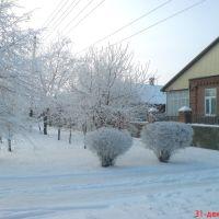 Зима, Пролетарск