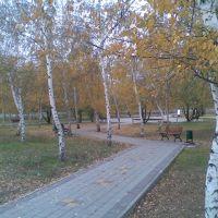 Парк в октябре, Родионово-Несветайская