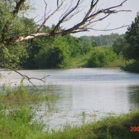 Рыбалка, Семикаракорск