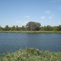 озеро Старый Дон гор.Семикаракорск 20.08.2007г., Семикаракорск