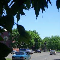 ул. Энгельса (памятник Свердлову), Тарасовский