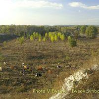 lugansk02, Тарасовский