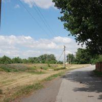 Дорога вдоль стадиона, Тацинский
