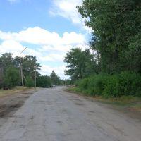 Дорога от стадиона к молокозаводу, Тацинский
