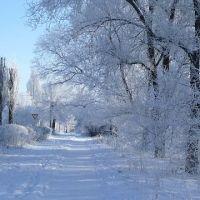 Утро 1-го января 2009 г., Цимлянск