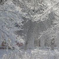 Новогодняя сказка, Цимлянск