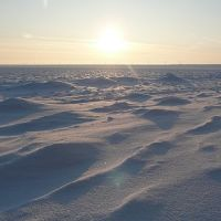 Снежная пустыня))), Цимлянск