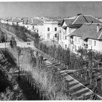 Перекресток улиц Советской и Энгельса, Цимлянск