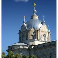 Гусь-железный, Троицкий храм, Гусь Железный
