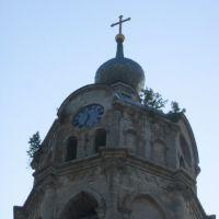 Колокольня Троицкого собора (фрагмент), Гусь Железный