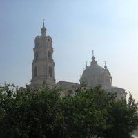 Троицкий собор в Гусю-Железном, Гусь Железный